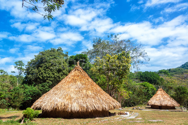 Two Indigenous Huts Stock photo © jkraft5