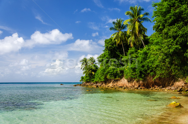 Rugged Lush Green Coastline Stock photo © jkraft5