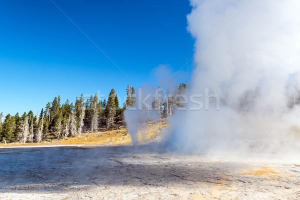 Geiser uitbarsting schoonheid Blauw reizen Stockfoto © jkraft5