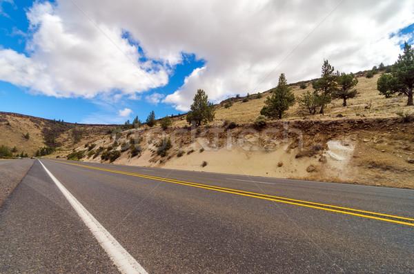 Arid Highway Stock photo © jkraft5