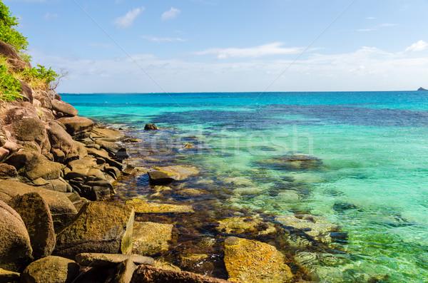 Caribbean Sea View Stock photo © jkraft5