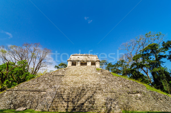 Front View of Mayan Temple Stock photo © jkraft5
