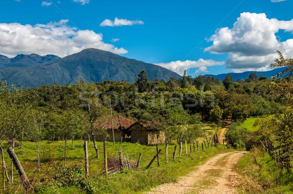 Colômbia ver montanhas estrada árvores Foto stock © jkraft5