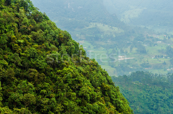 Lush Hill and Valley Stock photo © jkraft5