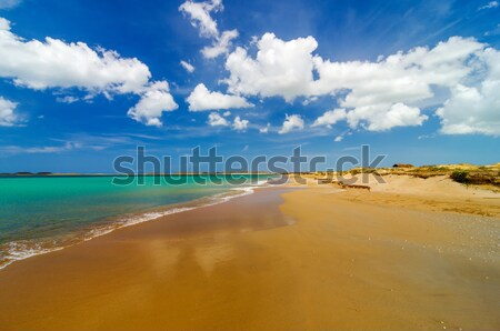 Wide Deserted Beach Stock photo © jkraft5