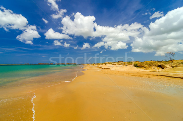 Deserted Caribbean Beach Stock photo © jkraft5