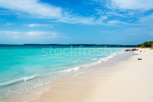 Turquoise Caraïbes eau plage paysage Photo stock © jkraft5