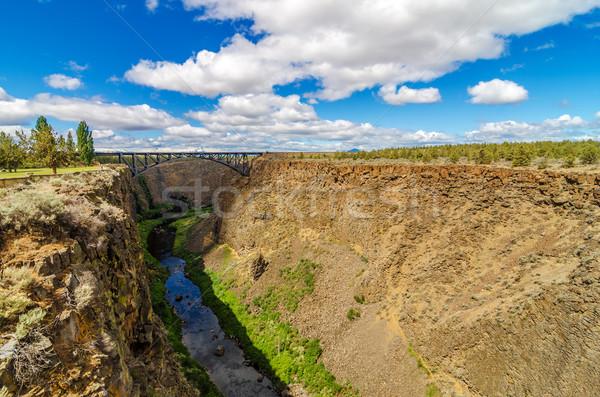 Crooked River Canyon and Bridge Stock photo © jkraft5
