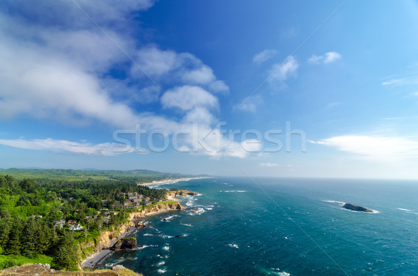 Oregon kust blauwe hemel weelderig groene hemel Stockfoto © jkraft5