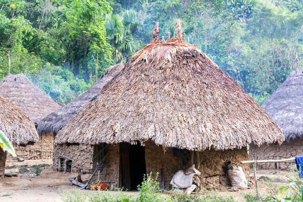 Stock photo: Indigenous Village