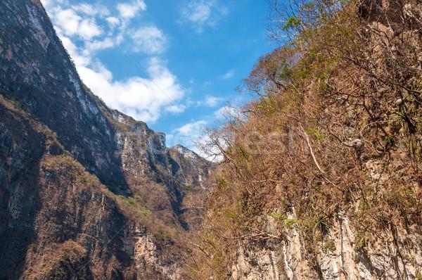 Walls of Sumidero Canyon Stock photo © jkraft5