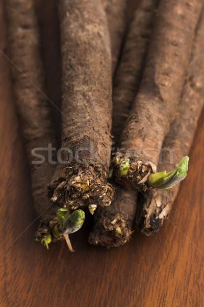 salsify vegetables on wood  Stock photo © joannawnuk