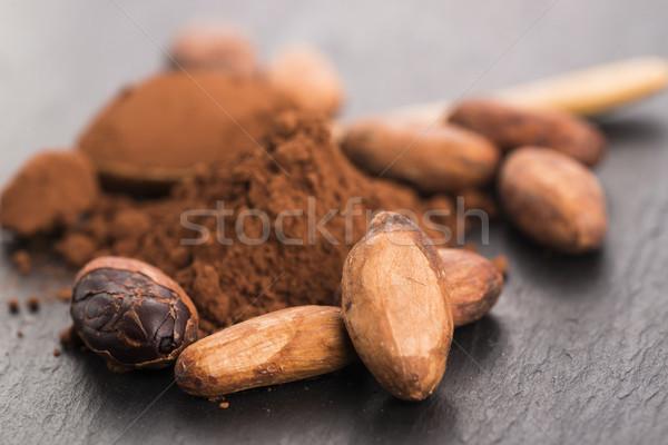 Cacau feijões pó colher comida planta Foto stock © joannawnuk