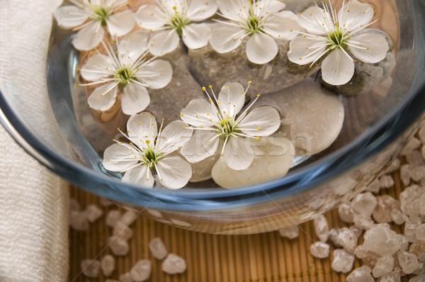Photo stock: Blanche · bien-être · produits · cerise · fleurs · eau