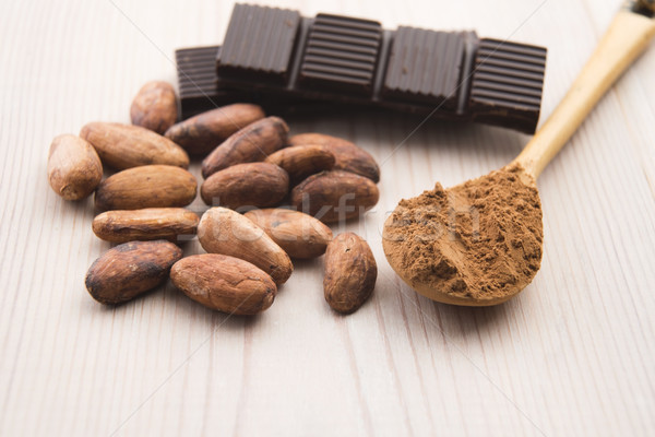 Cocoa (cacao) beans with chocolate Stock photo © joannawnuk