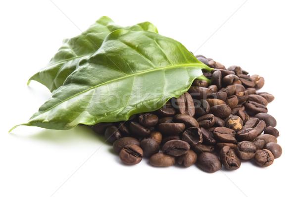 coffee grains and leaves Stock photo © joannawnuk