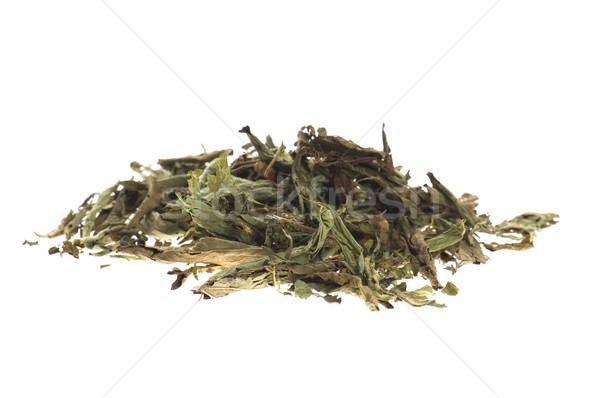 Dried Stevia Rebaudiana - natural sweetener isolated on white Stock photo © joannawnuk
