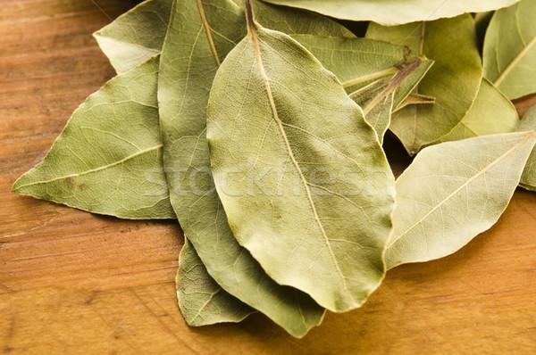 bay leafs Stock photo © joannawnuk