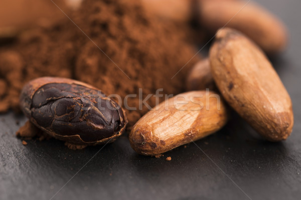 Cacau feijões pó colher planta cozinhar Foto stock © joannawnuk