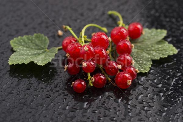 Kırmızı frenk üzümü arka plan renk beyaz Stok fotoğraf © joannawnuk