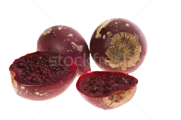 Prickly pear cactus ( Opuntia ficus-indica ) with red fruits Stock photo © joannawnuk