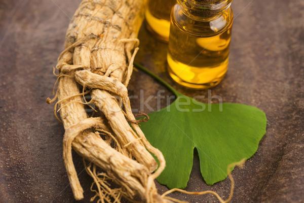 женьшень корень листьев лист здоровья энергии Сток-фото © joannawnuk