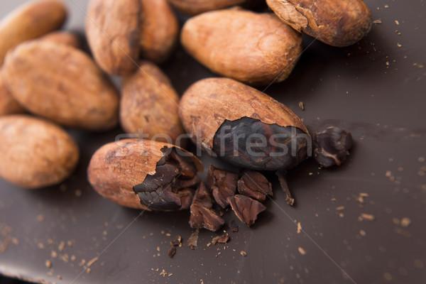 Kakao fasulye süt çikolata koyu çikolata grup Stok fotoğraf © joannawnuk