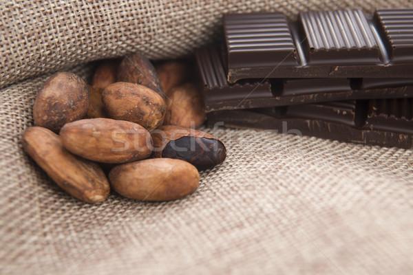 Kakaó bab csokoládé növény eszik gabona Stock fotó © joannawnuk