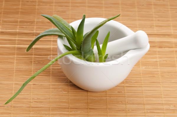 Aloe phytothérapie santé médecine peau usine Photo stock © joannawnuk