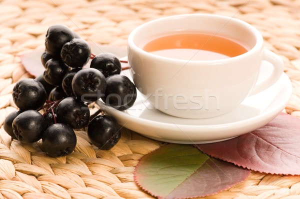 Black chokeberry tea Stock photo © joannawnuk