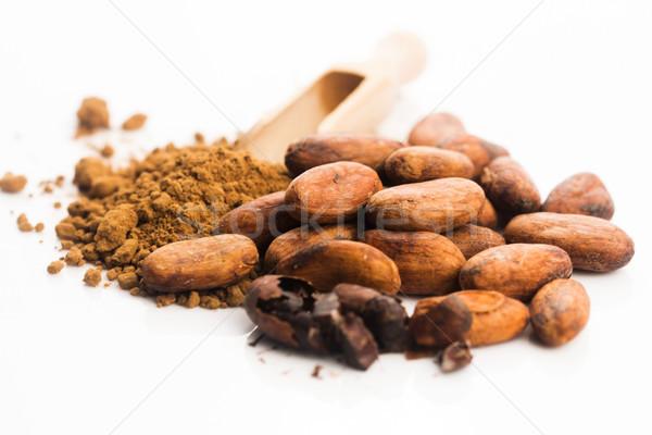 Kakao fasulye toz kaşık çikolata bitki Stok fotoğraf © joannawnuk
