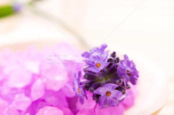 Levendula virág fürdősó fürdő wellness fa Stock fotó © joannawnuk