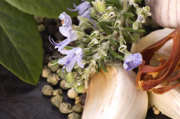 Gyógynövények fűszer fokhagyma babérlevél bors szerecsendió Stock fotó © joannawnuk