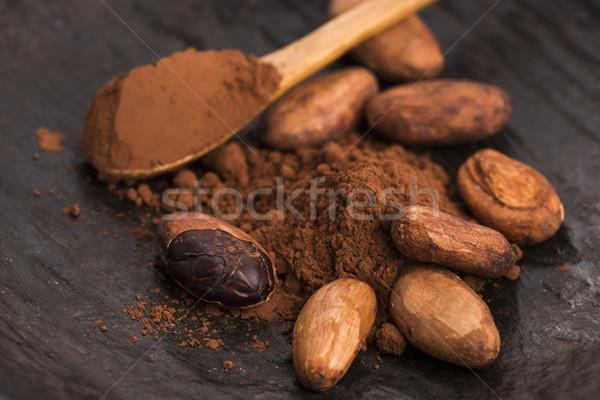 Kakao Bohnen Pulver Löffel Essen Anlage Stock foto © joannawnuk