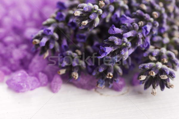 лаванды свежие цветок природы тело Сток-фото © joannawnuk