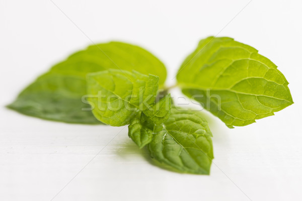 Fresh raw mint leaves isolated on white background Stock photo © joannawnuk