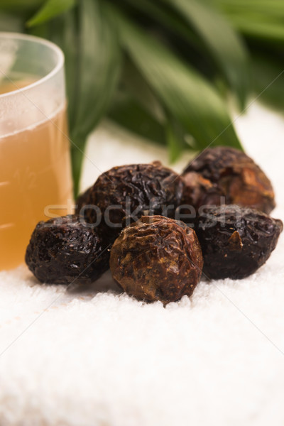 Soap nuts. Pile, cleanser. Stock photo © joannawnuk