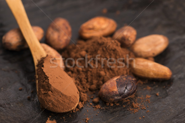 cacao beans and cacao powder in spoon Stock photo © joannawnuk