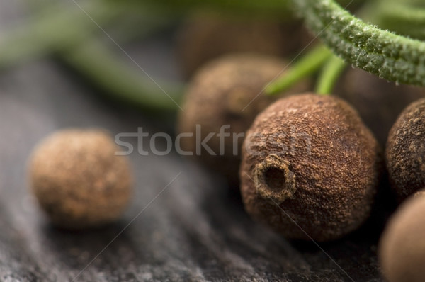allspice with fresh rosemary Stock photo © joannawnuk