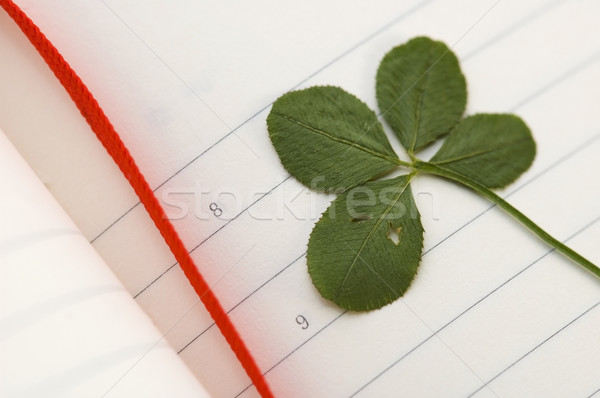 Four Leaf Clover and New Day. Stock photo © joannawnuk
