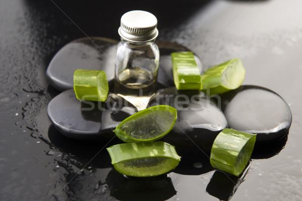 Aloés folhas Óleo pedra água Foto stock © joannawnuk