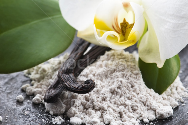 vanilla beans with aromatic sugar and flower Stock photo © joannawnuk
