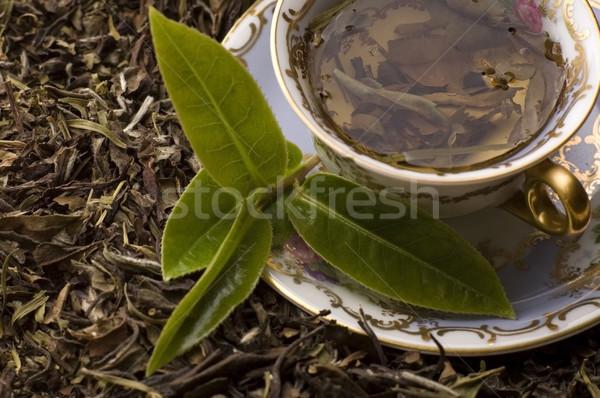 ストックフォト: 茶 · 新鮮な · 葉 · 背景 · 緑