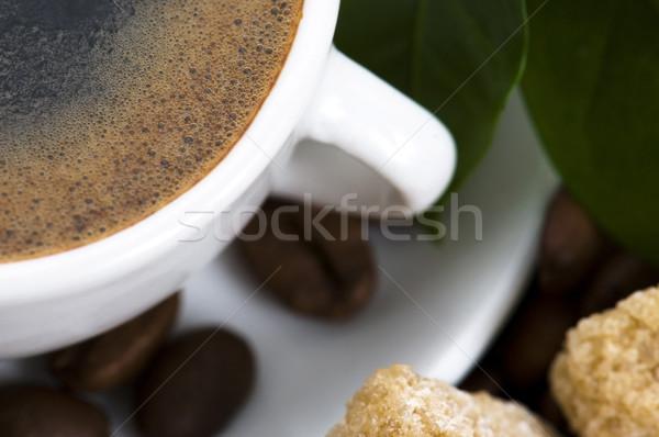 Fresco café ramo Foto stock © joannawnuk