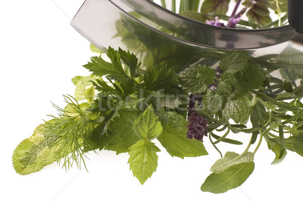 chopping fresh herbs. Stock photo © joannawnuk