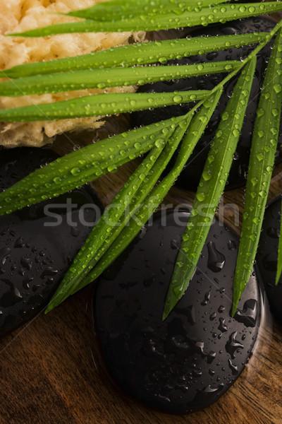 スパ 静物 緑色の葉 石 水 草 ストックフォト © joannawnuk