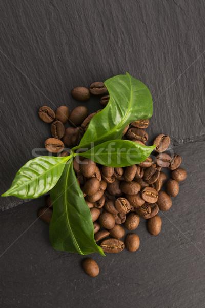 Kávé magvak levelek zöld csoport ital Stock fotó © joannawnuk