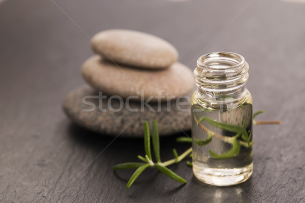 Essential oil with rosemary and fresh green leaves  Stock photo © joannawnuk