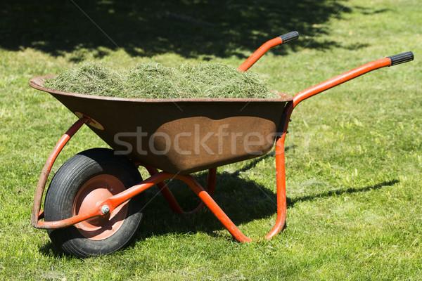 Stro kruiwagen voedsel bouw werk boerderij Stockfoto © joannawnuk