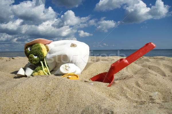 childhood. beach items and sun block Stock photo © joannawnuk